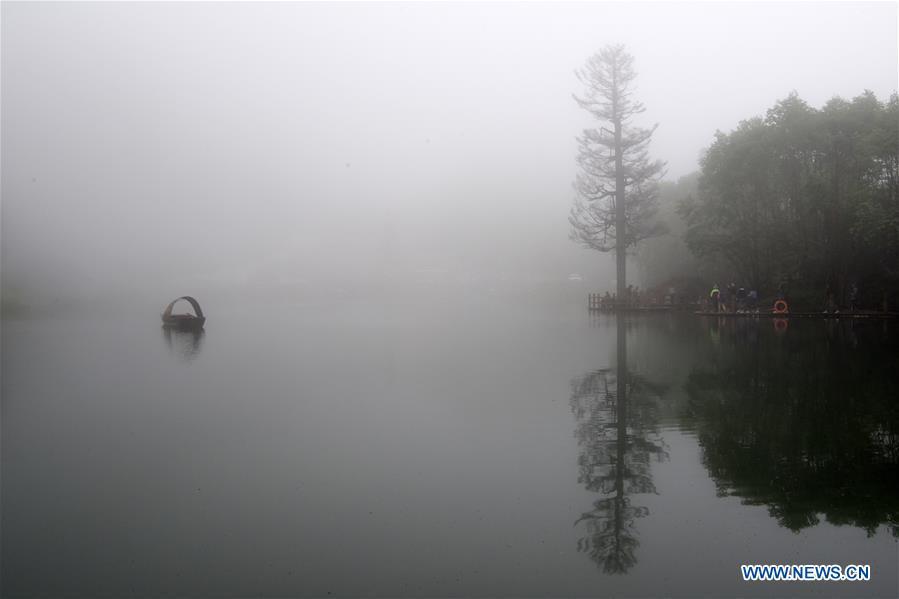 中国西北甘肃关口沟国家森林公园景观