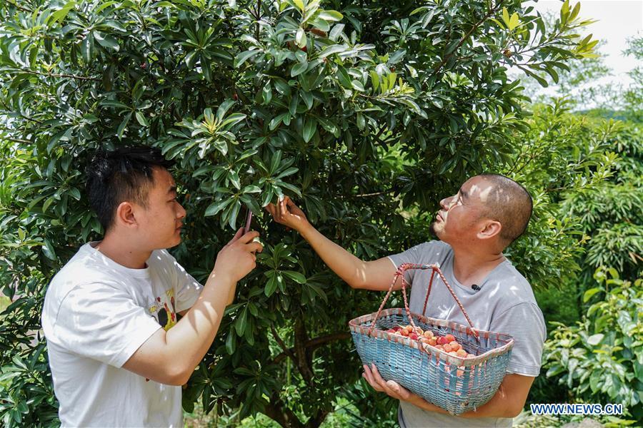 中国 - 江西 - 上饶 - 农民 - 网上销售(中国)