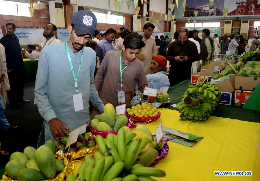 Mango festival kicks off in Hyderabad, Pakistan - Xinhua