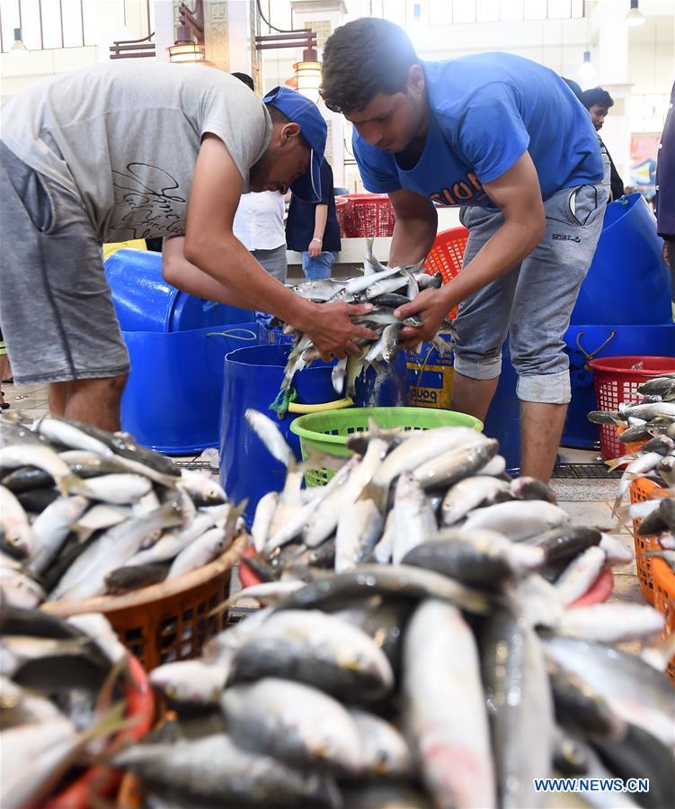 In pics: fish market in Kuwait City, Kuwait - Xinhua   English news cn