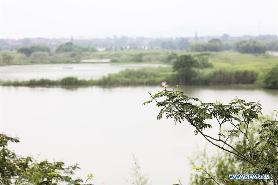 CHINA-ZHEJIANG-DEQING-WETLAND (CN)