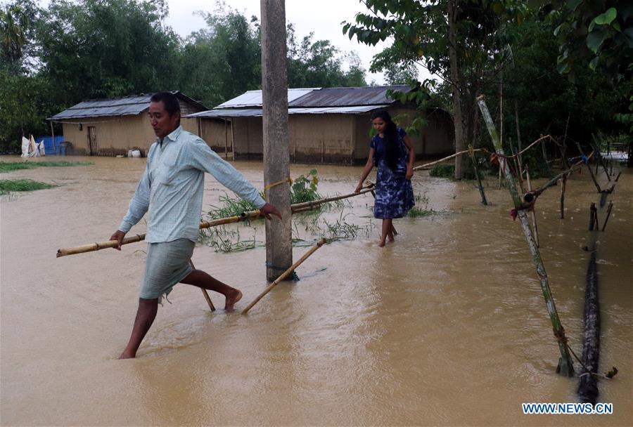 印度 -  ASSAM,洪水