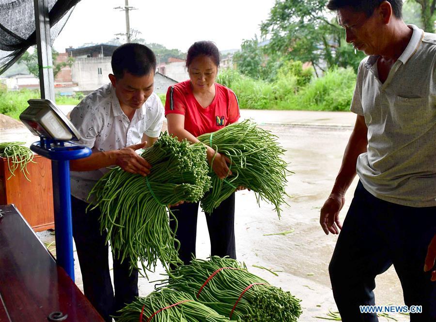 中国 - 广西 - 柳州 - 河南水稻面条 - 成分 - 长豆(CN)