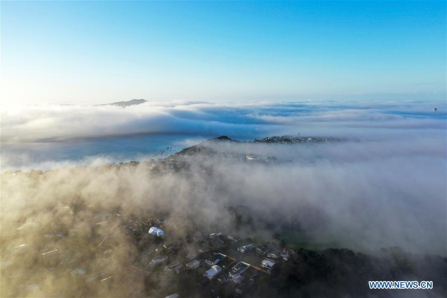 NEW ZEALAND-AUCKLAND-FOG