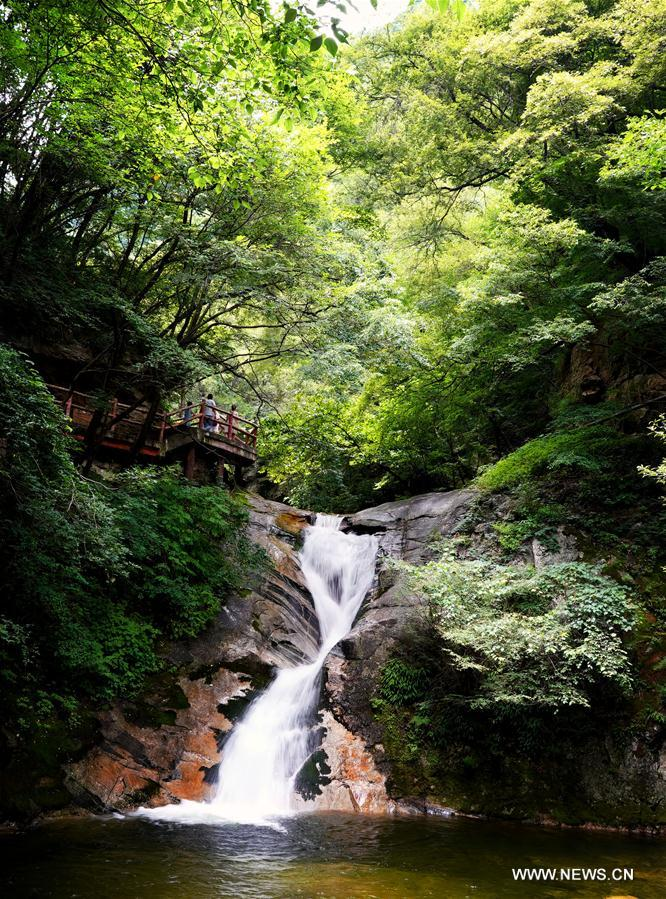 CHINA-SHAANXI-FOREST PARK-SCENERY (CN)