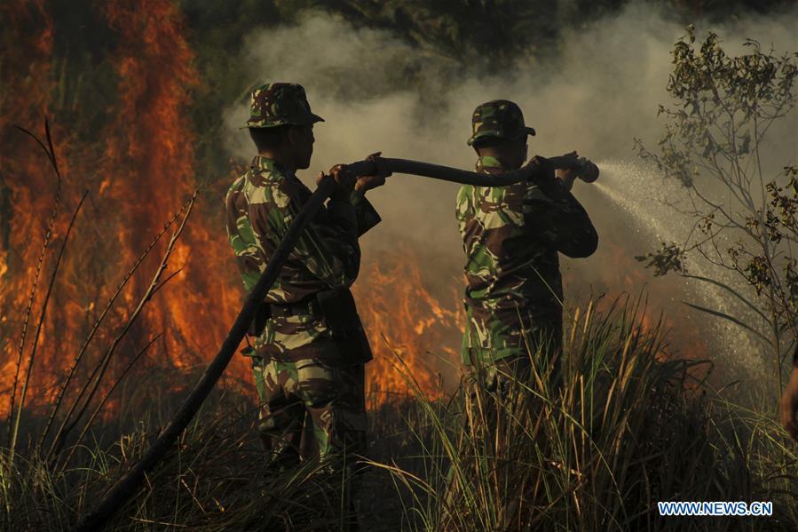 印度尼西亚 -  RIAU-PEATLAND火灾