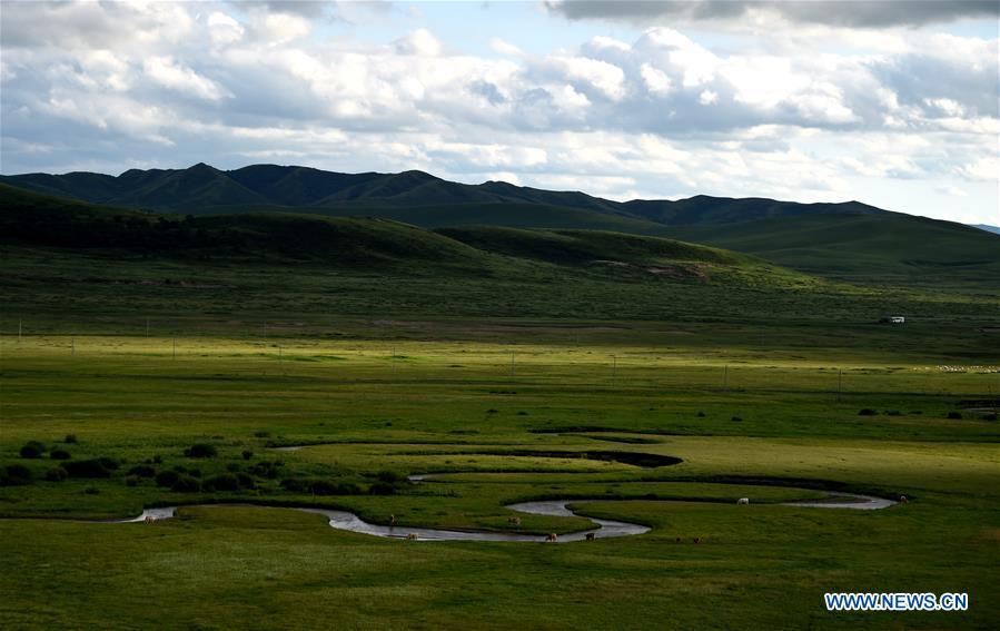 CHINA-INNER MONGOLIA-PASTURE SCENERY (CN)