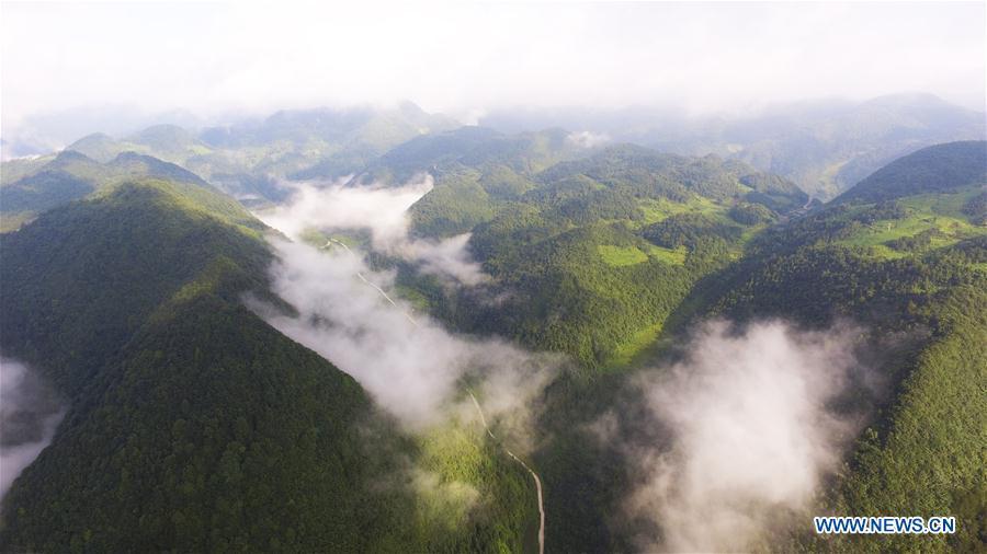 中国 - 重庆 - 风景(CN)