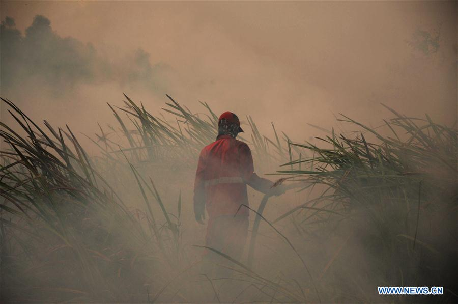XINHUA PHOTOS OF THE DAY