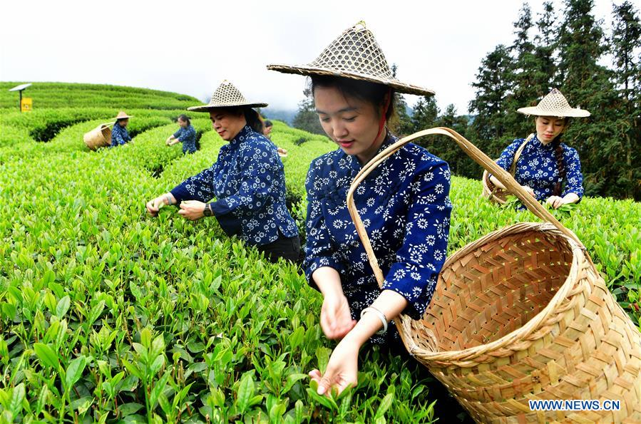 CHINA-AGRICULTURE DEVELOPMENT (CN)