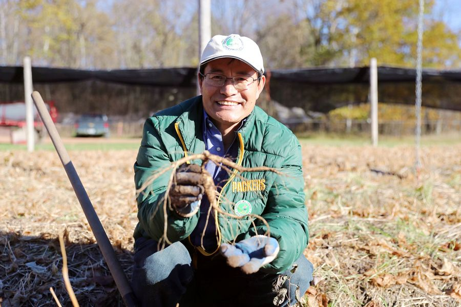 Interview: Wisconsin ginseng farmers say they want free trade - Xinhua | English.news.cn