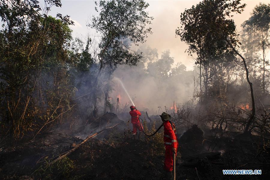 INDONESIA-SOUTH SUMATRA-FIRE