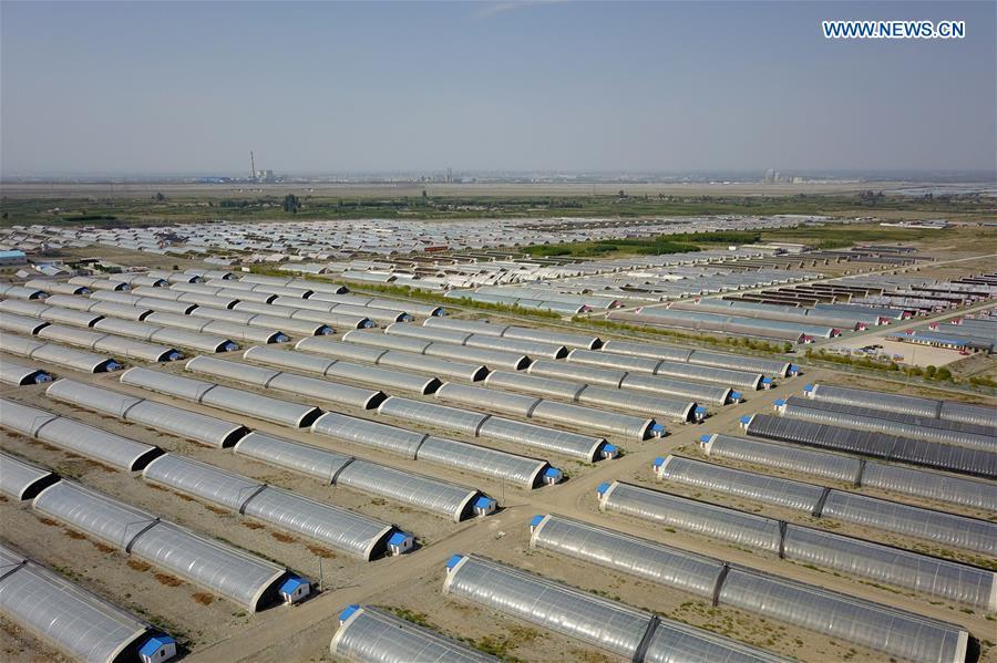 温室在沙漠中建立,以发展中国西