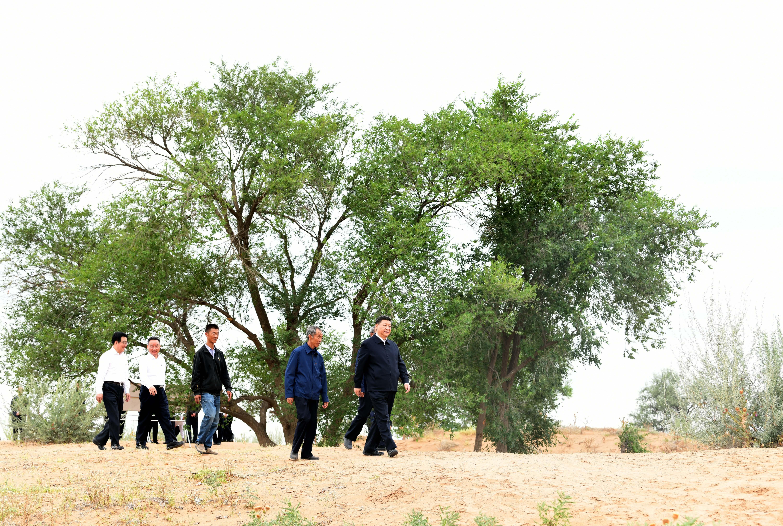 Xi underlines perseverance in building beautiful China  - Xinhua | English.news.cn