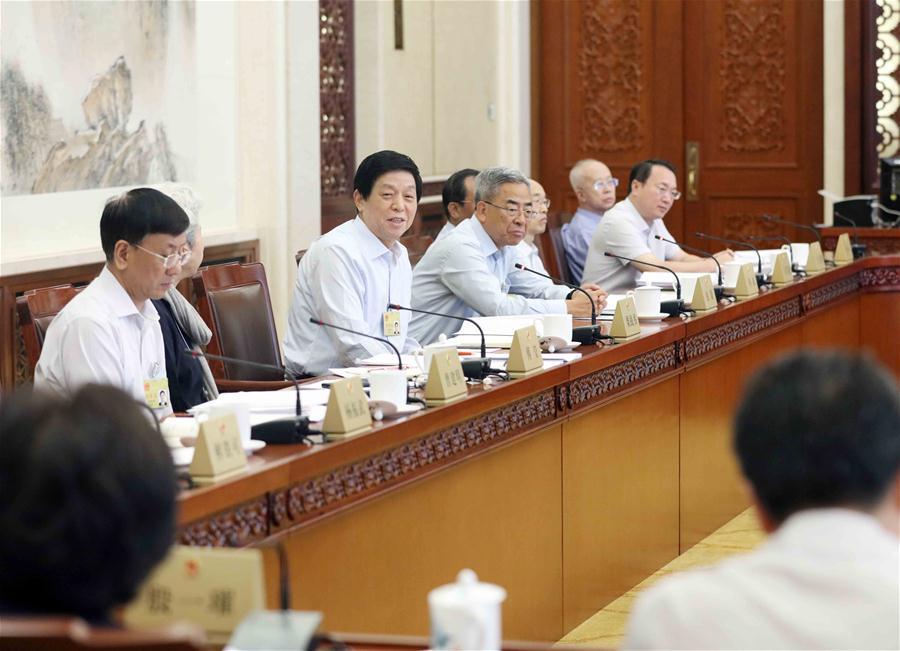 CHINA-BEIJING-LI ZHANSHU-NPC-PANEL DISCEUSSION(CN)
