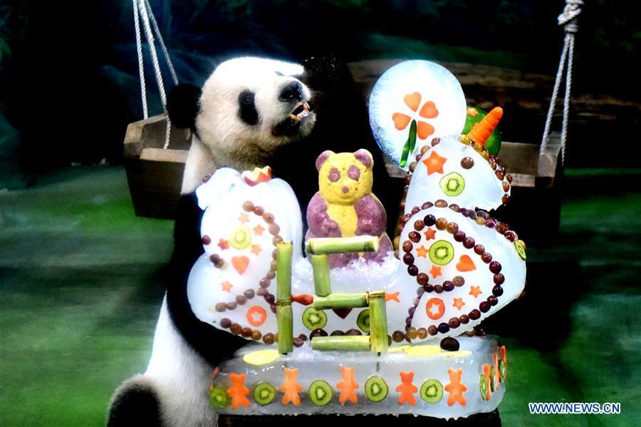 中国 - 台北 - 大熊猫 - 生日(CN)
