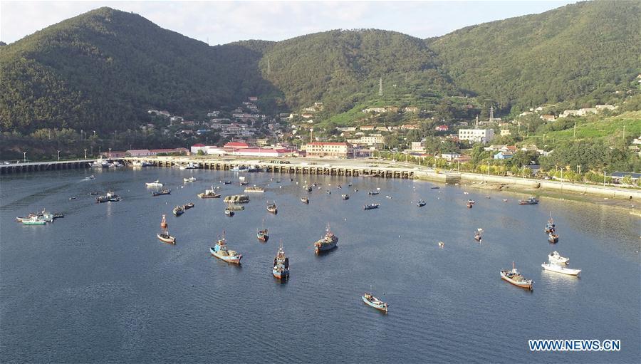 CHINA-DALIAN-CHANGHAI-HAIYANG ISLAND (CN)