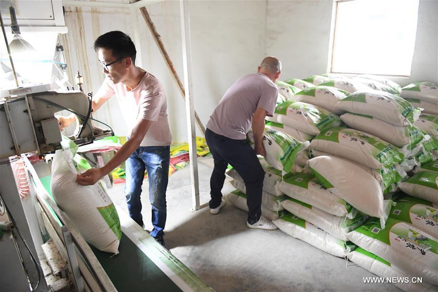 CHINA-ZHEJIANG-HUZHOU-ECO AGRICULTURE (CN)