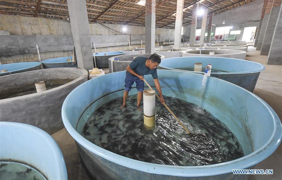 中国 - 重庆 - 冷水鱼类养殖(CN)