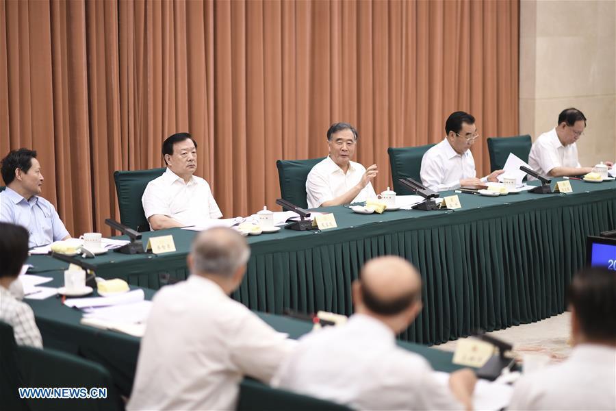 中国 - 北京 - 王洋 - 政协 - 磋商会议(CN)