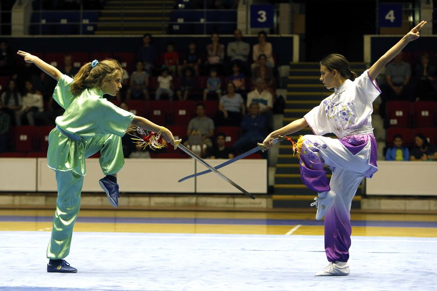 Chinese martial arts show wows audience in Bucharest   - Xinhua | English.news.cn