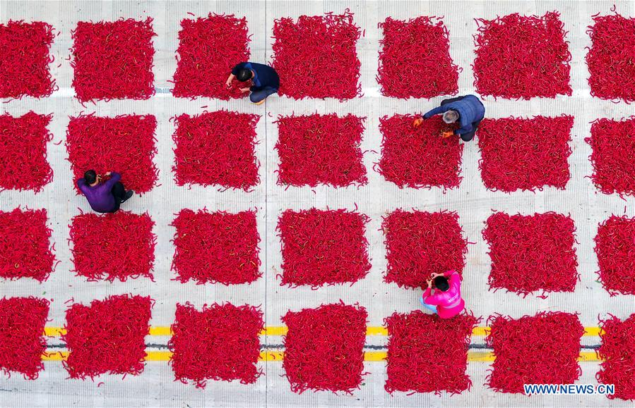 CHINA-FARMERS' HARVEST FESTIVAL (CN)