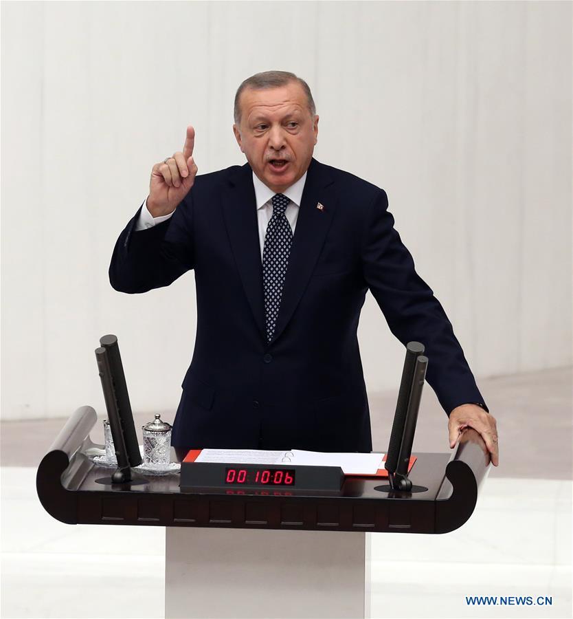 土耳其-安卡拉-埃尔多安-安全区