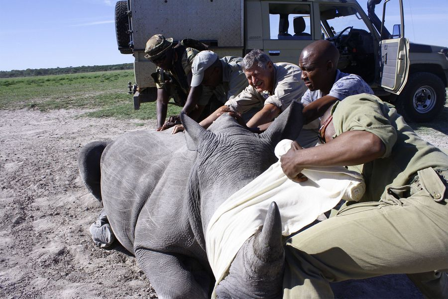 Recent rhino poaching cases are worrying: Botswana official - Xinhua | English.news.cn