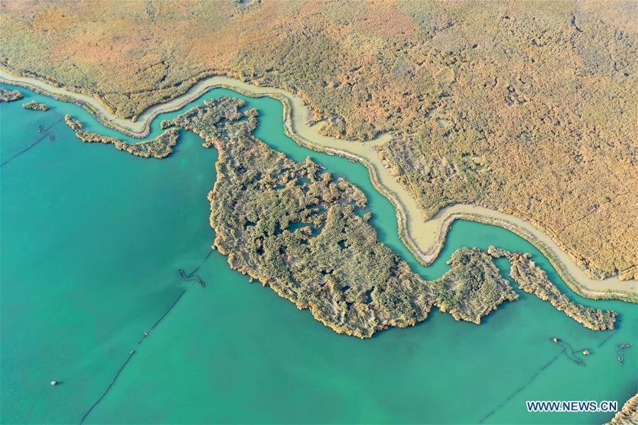 CHINA-XINJIANG-BOSTEN LAKE-SCENERY(CN)