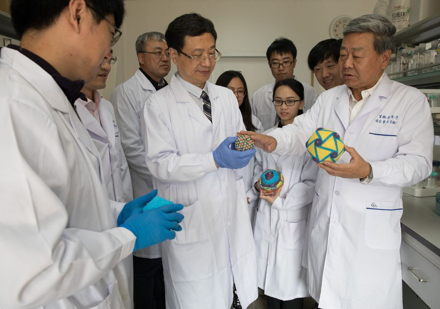 Chinese study unlocks clues to fight African swine fever - Xinhua | English.news.cn