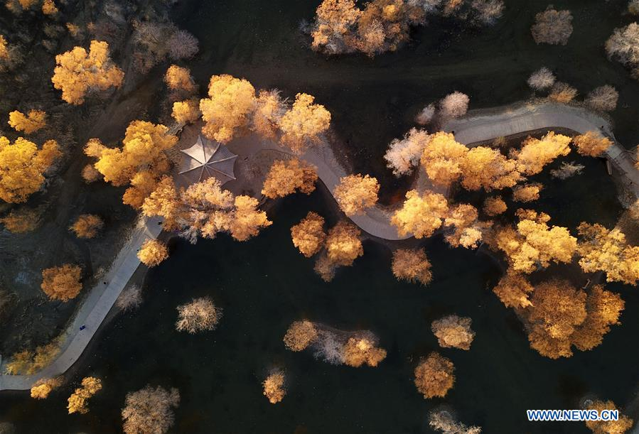 CHINA-JIUQUAN-AUTUMN SCENERY (CN)