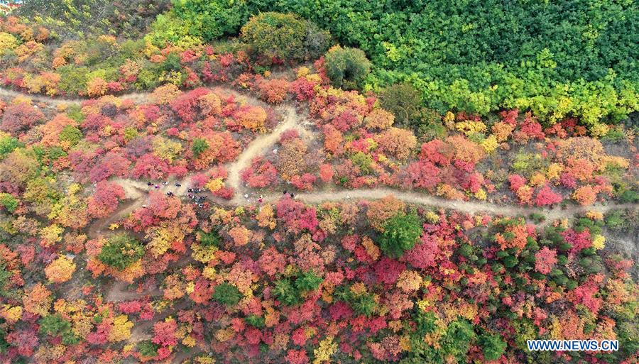 CHINA-HEBEI-JINGXING-XIANTAI MOUNTAIN-SCENERY (CN)