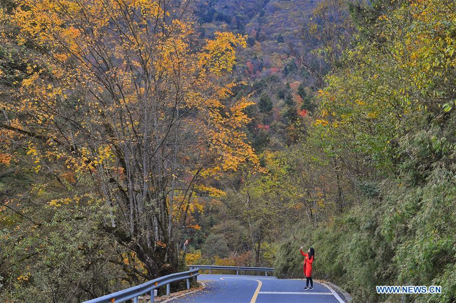 CHINA-SICHUAN-TIANQUAN-AUTUMN SCENERY (CN)