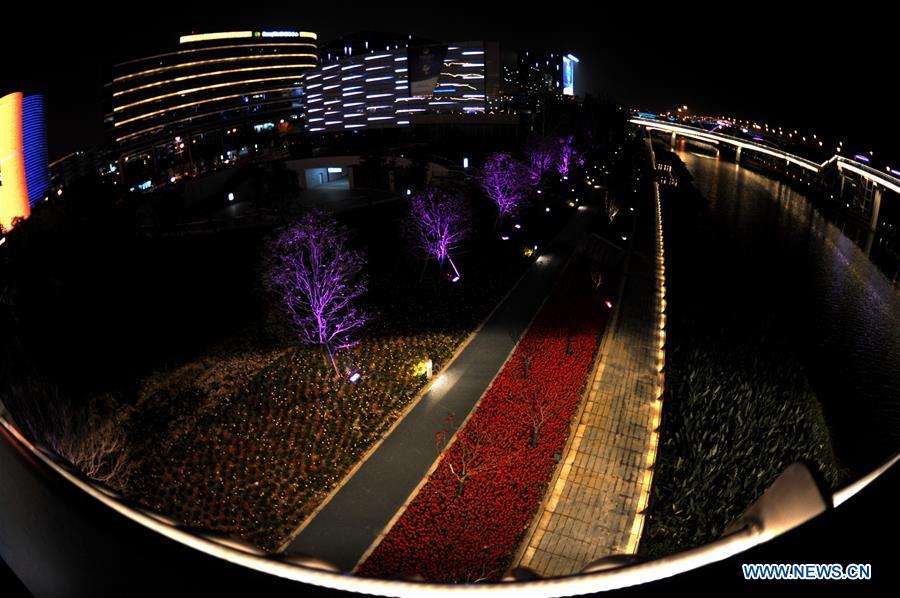 CHINA-SHANGHAI-CIIE-NIGHT VIEW (CN)