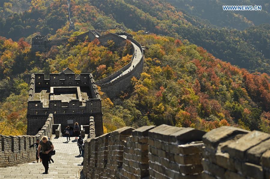 CHINA-BEIJING-GREAT WALL-AUTUMN SCENERY (CN)