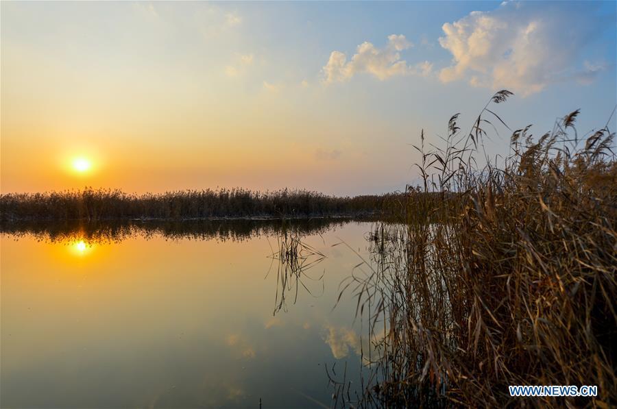 中内蒙古呼和浩特市河海湿地秋季风景区(CN)