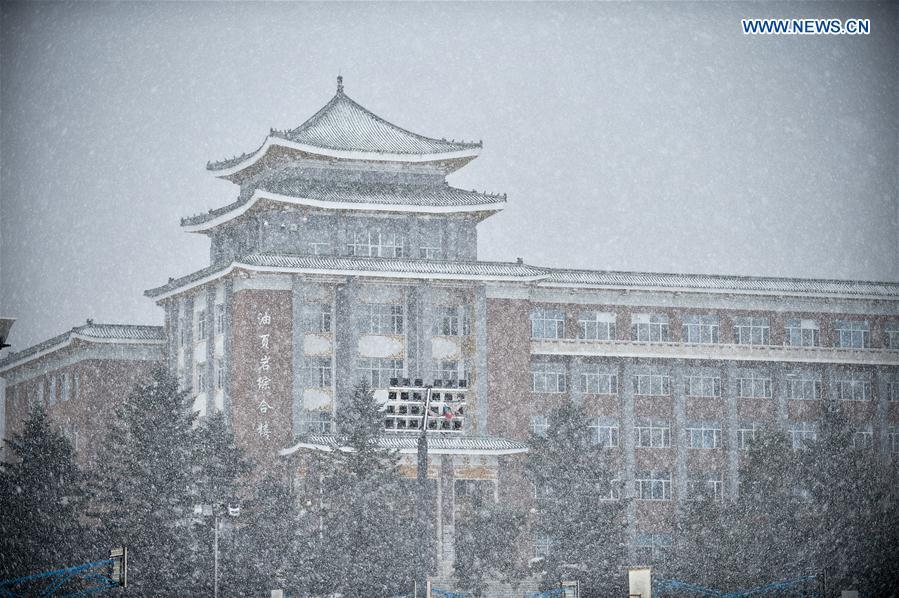 CHINA-JILIN-CHANGCHUN-SNOWFALL (CN)
