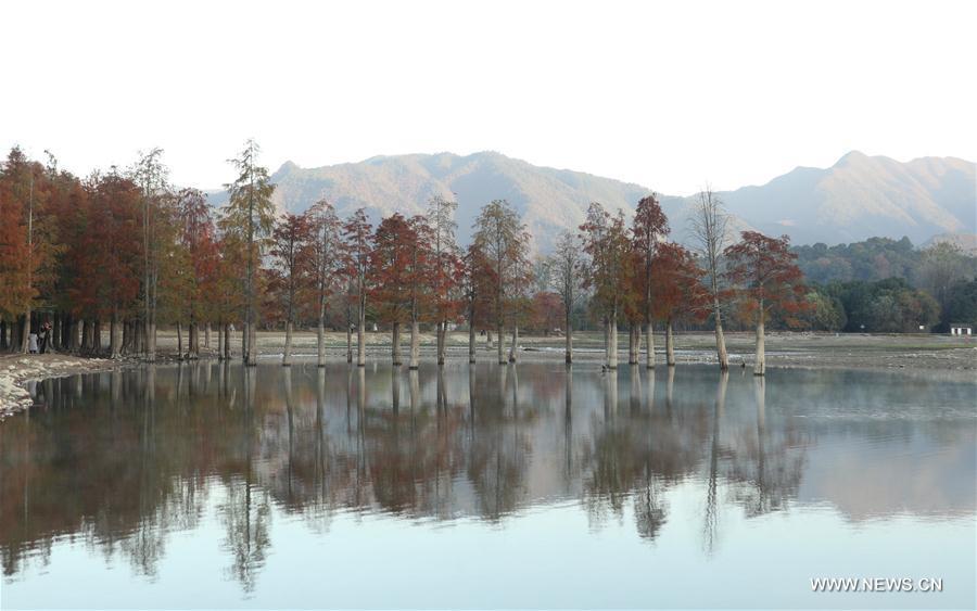 CHINA-ANHUI-HUANGSHAN-WINTER SCENERY (CN)