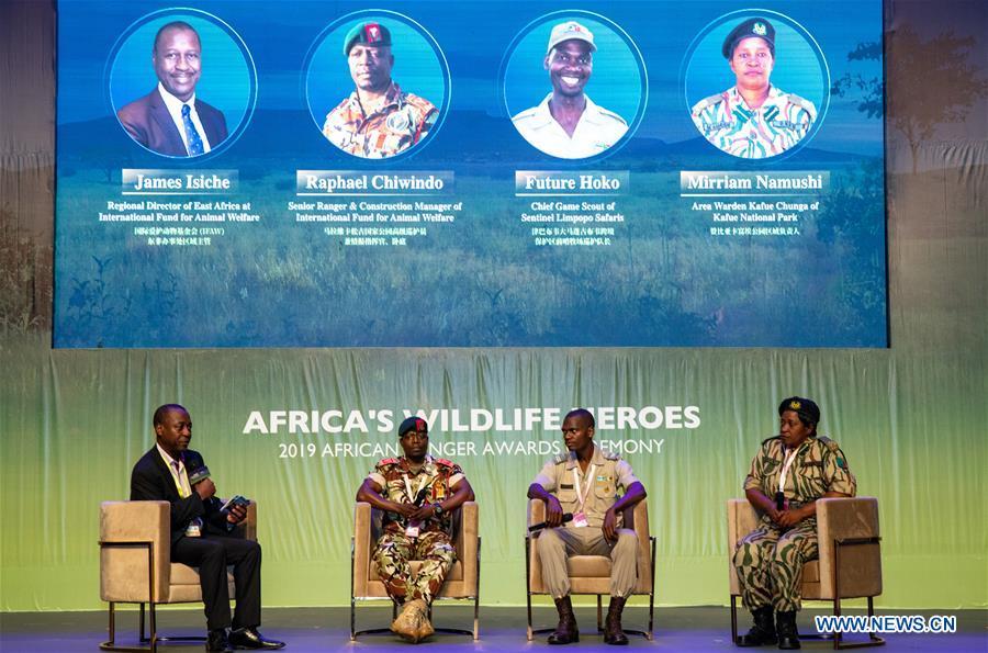 加纳-阿克拉-非洲激进队奖