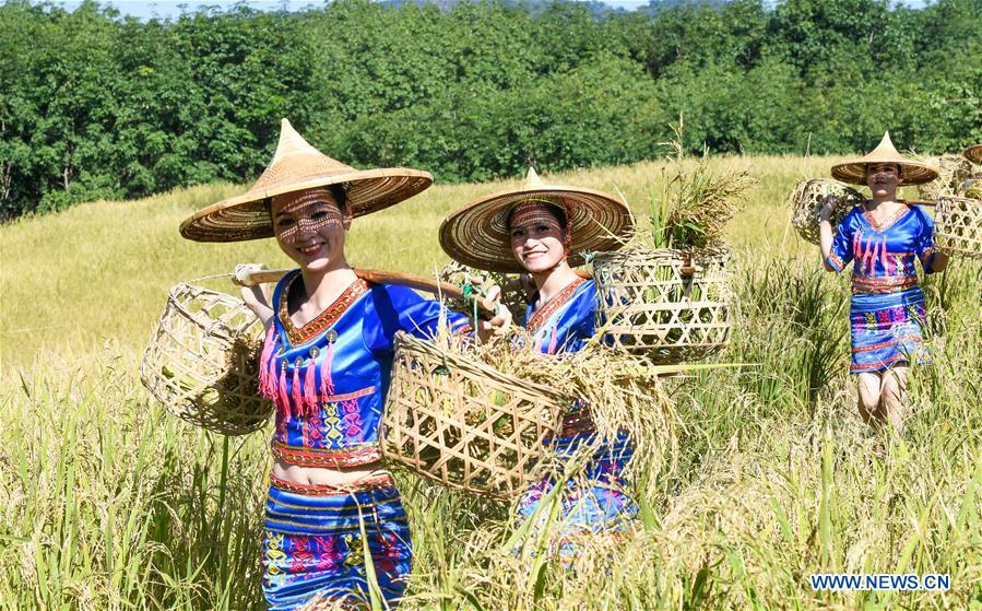 CHINA-HAINAN-BAISHA-LI ETHNIC GROUP-RICE HARVEST-CELEBRATION (CN)