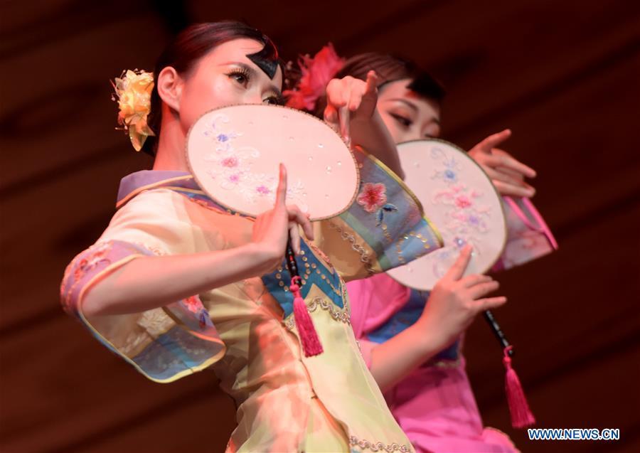 奥地利-维也纳-中国残疾人音乐会