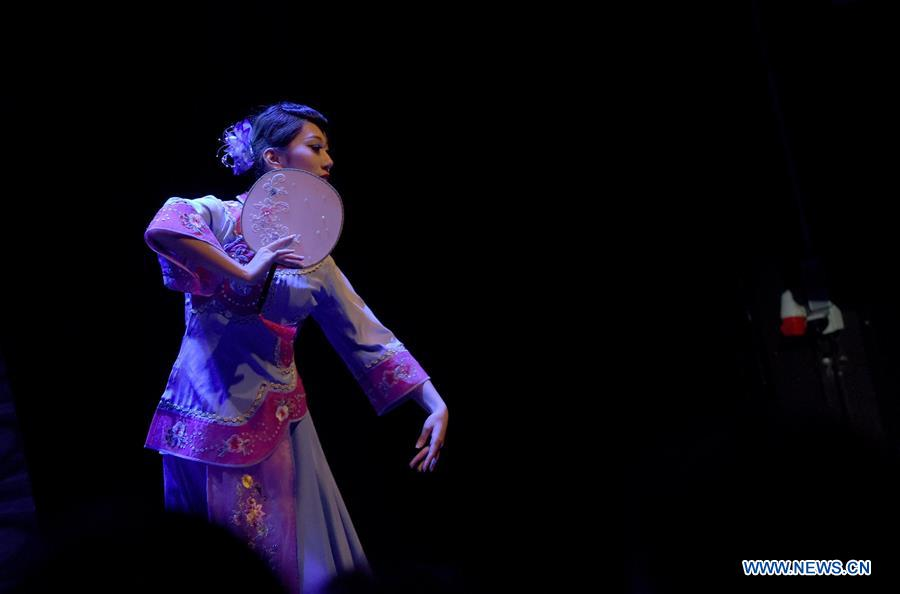 Vienna Golden Autumn Concert By Shanghai Disabled People S Art Troupe Held In Austria Xinhua English News Cn
