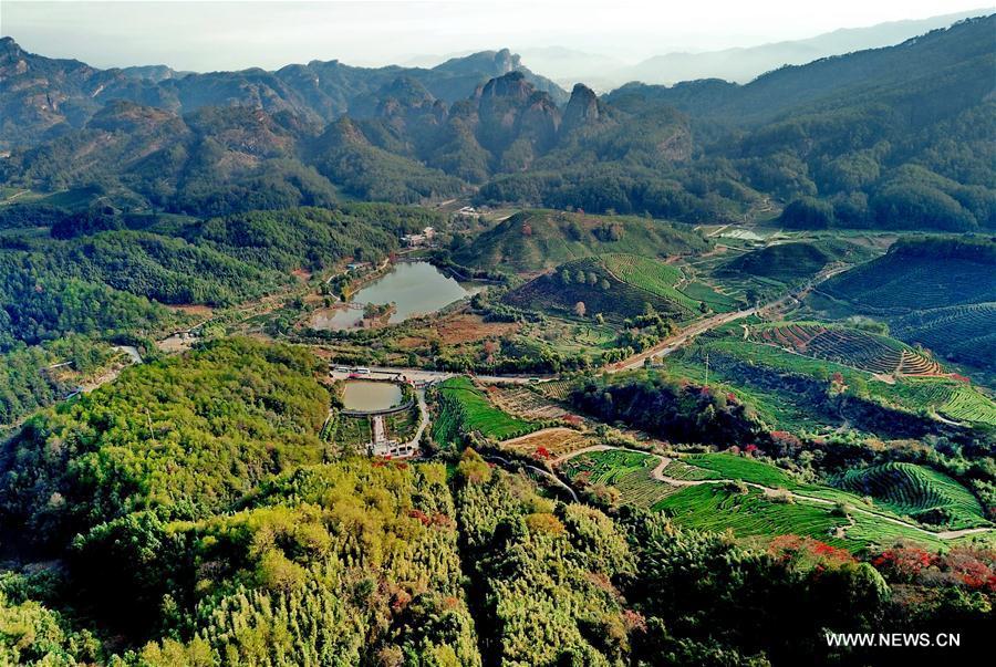 CHINA-FUJIAN-WUYI MOUNTAIN-SCENERY (CN)