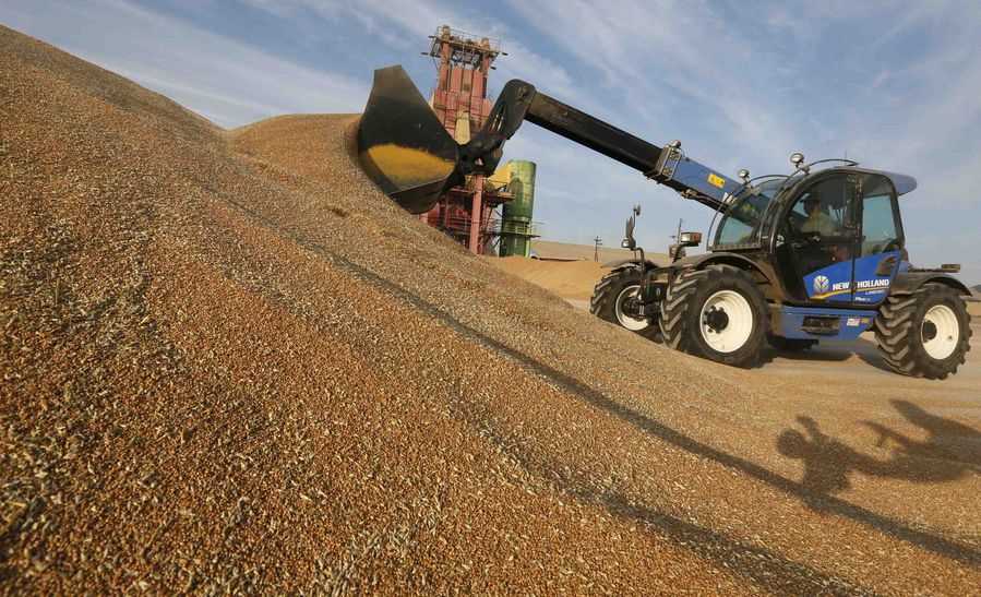 Russian agricultural output grows, exports decline - Xinhua | English.news.cn