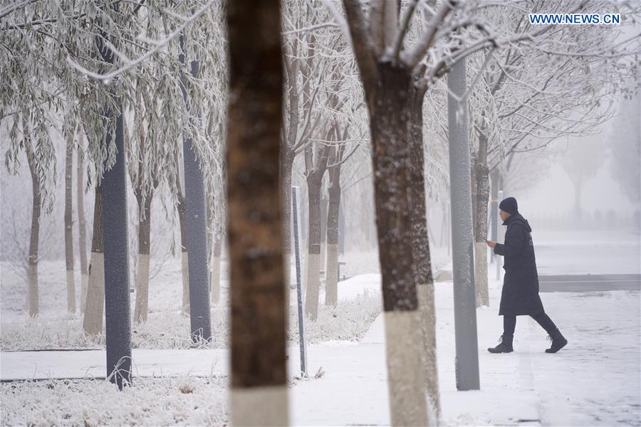 CHINA-HEBEI-XIONG'AN-SNOW