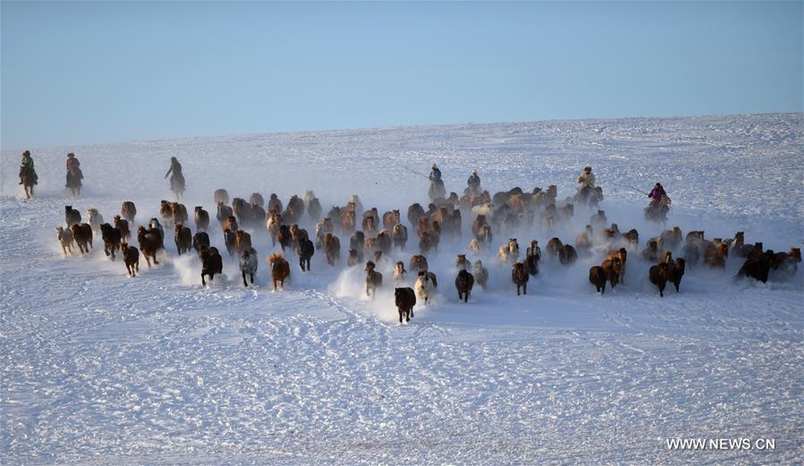 CHINA-INNER MONGOLIA-BASHANG PASTURE-PHOTOGRAPHY FESTIVAL (CN)