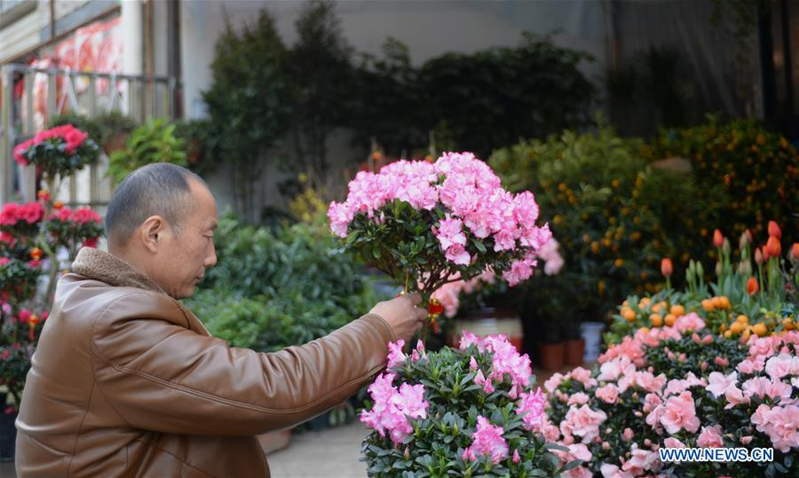 CHINA-HUNAN-CHINESE NEW YEAR-FLOWER ECONOMY (CN)