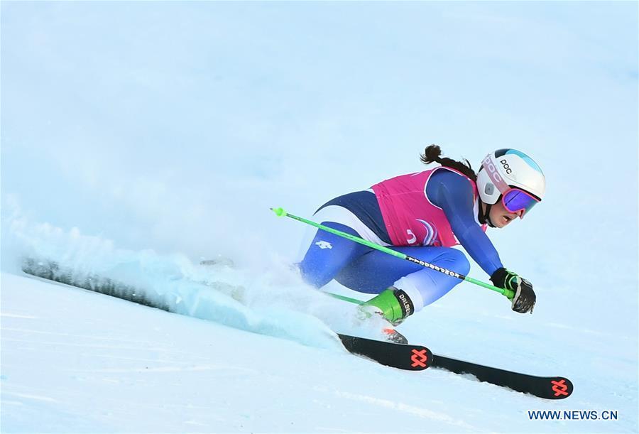 (SP)瑞士-LES DIABLERETS-冬季瑜伽-阿尔卑斯山滑雪-女士巨人SLOM