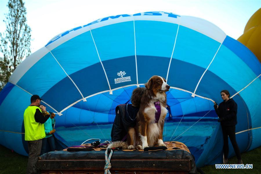 澳大利亚-堪培拉-气球景