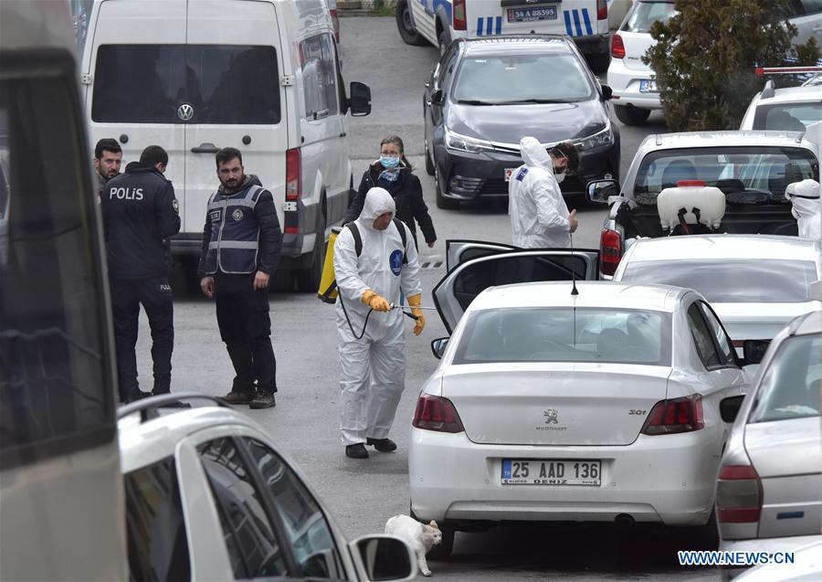 从欧洲-QUARANTINE撤出的土耳其-伊斯坦布尔-COVID-19-公民